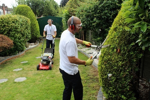 Garden maintenance in london reliable and local gardeners for Gardening services