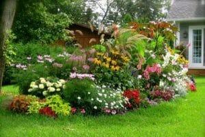 Landscape-Designer