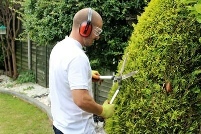 Weed Removal & Hedge Pruning
