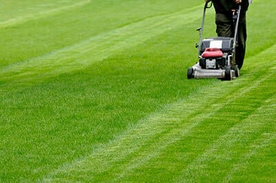 Lawn Mowing Services in London