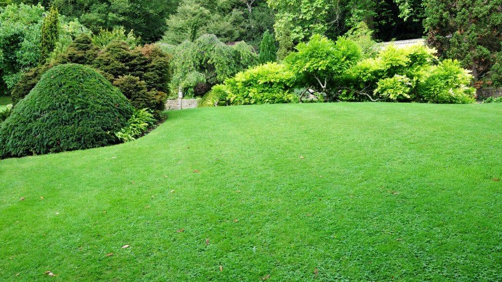 landscape gardeners in London