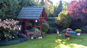 Beginner Tips For Landscape Design
