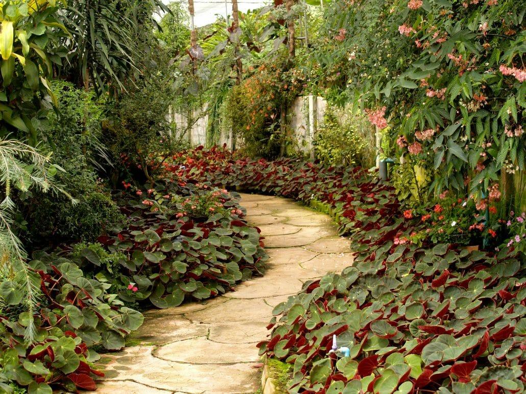 gardening services london