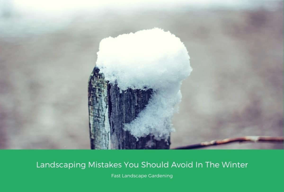 Landscaping Mistakes You Should Avoid In The Winter