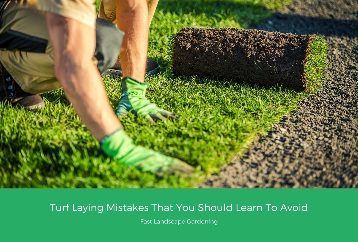 Turf Laying Mistakes That You Should Learn To Avoid