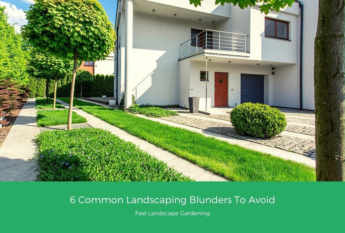 6 Common Landscaping Blunders To Avoid