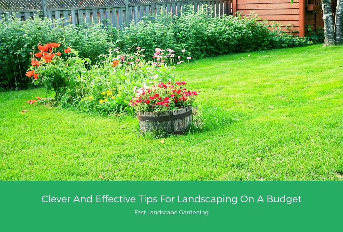 Clever And Effective Tips For Landscaping On A Budget