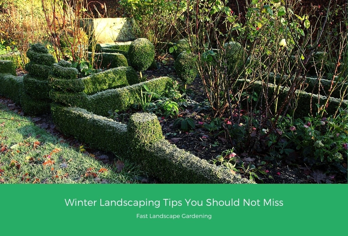 Winter Landscaping Tips You Should Not Miss