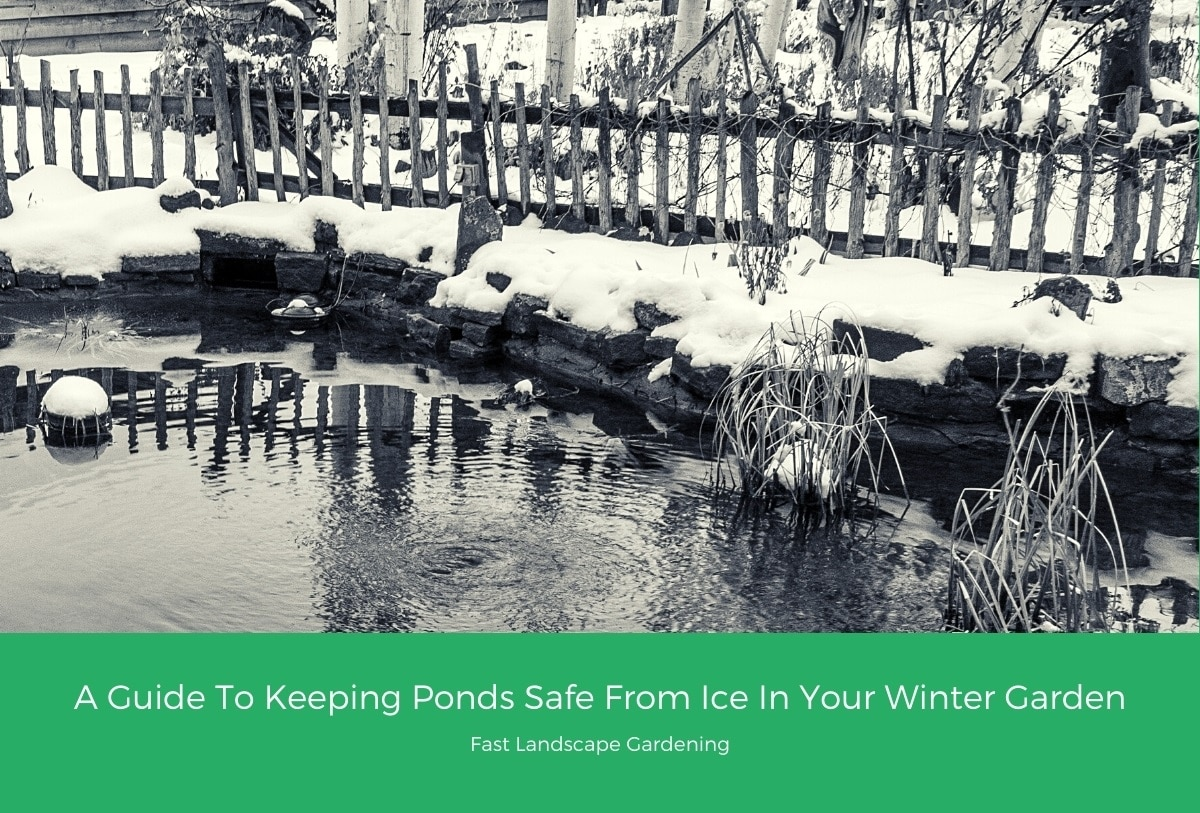 A Guide To Keeping Ponds Safe From Ice In Your Winter Garden