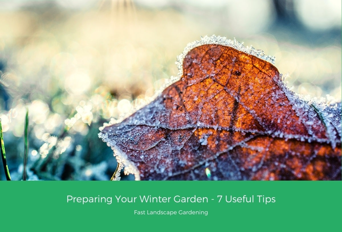 Preparing Your Winter Garden 7 Useful Tips